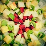Plat avec le fruit méditerranéen et tropical Photographie stock