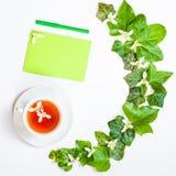Plat-configuration carrée avec un modèle des feuilles et du whi frais de vert de lierre Photographie stock