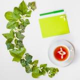 Plat-configuration carrée avec un modèle des feuilles et du whi frais de vert de lierre Images stock