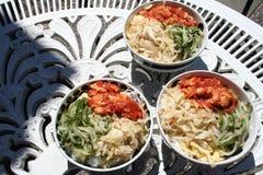 Plat coréen avec le poulet en sauce épicée, nouilles, saladand de concombre ainsi de suite Images libres de droits