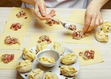 Plat d'Asiatique de boulettes Photo libre de droits