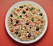Plat d'orge et de salade écrite de riz Photographie stock libre de droits