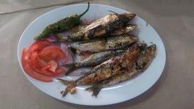 Plat das sardinhas grelhadas marroquino Imagem de Stock Royalty Free
