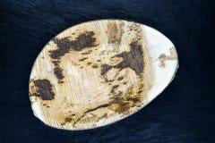 Plat de banane d'Eco sur la surface en pierre noire de fond photos stock