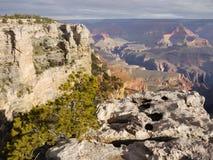 Platô de Colorado e vale, Grand Canyon Fotografia de Stock Royalty Free