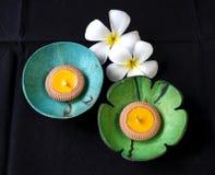 Plat de coquille de noix de coco de couleur Images libres de droits