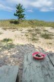 Plat de farine d'avoine avec des myrtilles sur la table de terrain de camping images stock