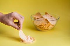 Plat de nourriture malsaine de frites Photos libres de droits