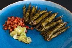 Plat des anchois Photo stock