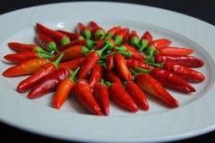 Plat des piments d'un rouge ardent photographie stock libre de droits