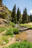 Platô do Assy na montanha de Tien Shan em Almaty, Cazaquistão, Ásia no verão fotos de stock