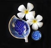Plat en céramique bleu profond de forme de feuille Image libre de droits