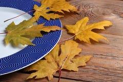 Plat et feuilles sur une table Photographie stock libre de droits