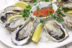 Plat frais d'huîtres image stock