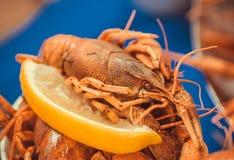 Plat méditerranéen de restaurant avec le morceau de citron visiteurs affamés de attente d'une écrevisse Foyer sélectif Image libre de droits