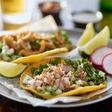Plat mexicain authentique de taco de rue avec du porc photographie stock libre de droits