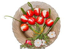 Plat spécial avec les tomates, l'oignon de ressort et le radis pour des événements spéciaux Photos libres de droits