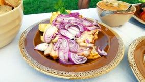 Plat traditionnel de nourriture de Transylvanian Photos stock