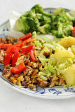 Plat végétarien Image libre de droits