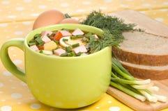 Plat végétarien froid photos stock