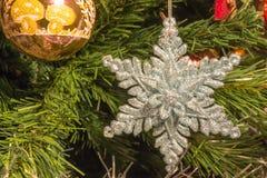 Plata brillante seis decoraciones de la estrella del punto en el árbol de navidad Fotos de archivo libres de regalías