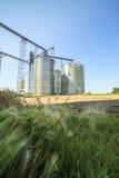 Plata, silos agrícolas brillantes Imágenes de archivo libres de regalías