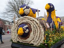 Plataforma con los tulipanes y los jacintos durante el desfile tradicional Bloemencorso de las flores de Noordwijk a Haarlem en e Foto de archivo libre de regalías
