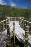 Plataforma de la visión del lago del bosque Imagenes de archivo