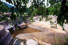 Plataforma de piedra en la charca a través de las hojas en parque tropical Imagenes de archivo