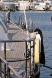 Plataforma do iate da vela foto de stock