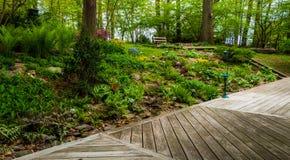 Plataforma e jardim colorido da floresta fotos de stock