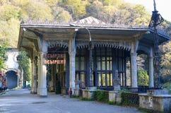 Plataforma railway abandonada Fotos de Stock Royalty Free