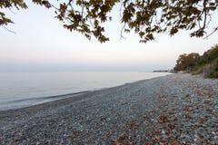 Platamonas beach under trees royalty free stock image