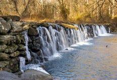 Platane Mills Dam Stockfotografie