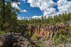 Platanen-Schlucht Rim Trail in Arizona stockbilder