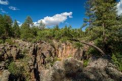 Platanen-Schlucht Rim Trail in Arizona lizenzfreie stockbilder