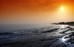platanes Крита пляжа Стоковое Фото