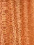 Platanus (textura de madeira) Fotografia de Stock Royalty Free