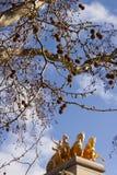 Platanus tree and Quadriga of Aurora Stock Photos