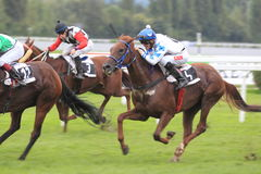 Platba in horse racing in Prague Royalty Free Stock Images
