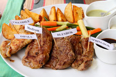 Plate of African game meats. A plate of African game meats with sauces, vegetables, and potatoe fries.  Meats are marked with little toothpick signs; crocodile Stock Images