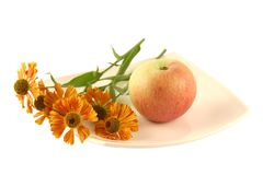 Plate with apple and a flower Stock Photos