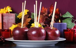 Plate of apples on sticks ready to be made into Halloween trick or treat toffee caramel apples Royalty Free Stock Image