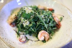 Plate with arugula and shrimps. In restaurant royalty free stock photo