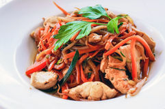 Plate of asian cuisine wok Royalty Free Stock Photos
