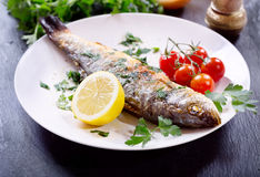 Plate of baked sea bass Royalty Free Stock Photos