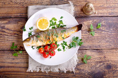 Plate of baked sea bass Stock Images