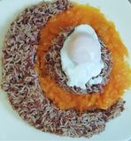 Beautiful plate of rice. Plate of basmati rice and egg with pumpkin sauce stock illustration