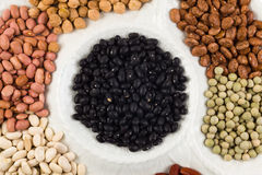 Plate of beans Royalty Free Stock Photos