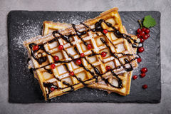 Plate of belgian waffles with chocolate sauce and currant fruit Royalty Free Stock Photos